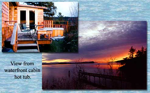 The Waterfront Cabin Has A Spectacular View To Southwest Capturing Warm Winter Sun Fully Equipped Kitchen Allows You Stay At Home Relax